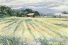 Devine Field